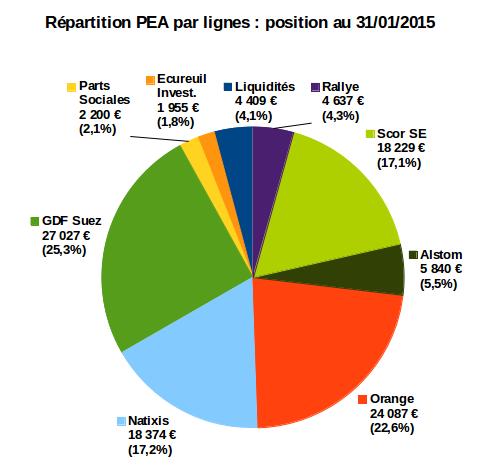 stratégie d'investissement sur mon PEA : répartition par lignes au 31/01/2015