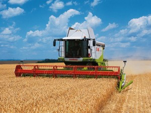 moissonneuse en action dans un champ de blé