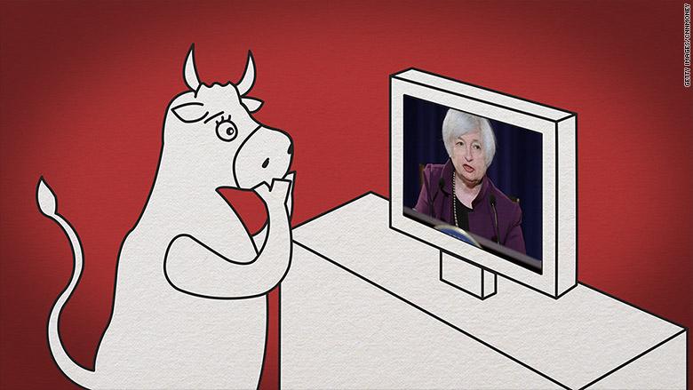 taureau se demandant si Mme Yellen va augmenter les taux de la FED